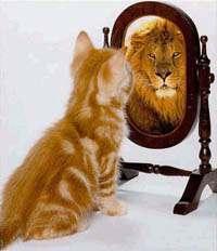 autoestima, valor humano