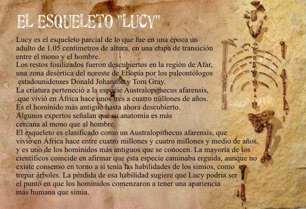 esqueleto Lucy